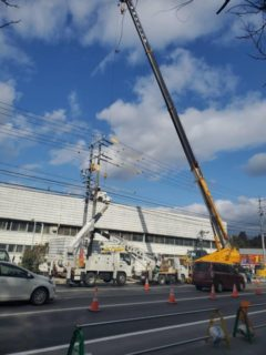 【求人募集中】杉本電気クレーン株式会社ってどんな会社?